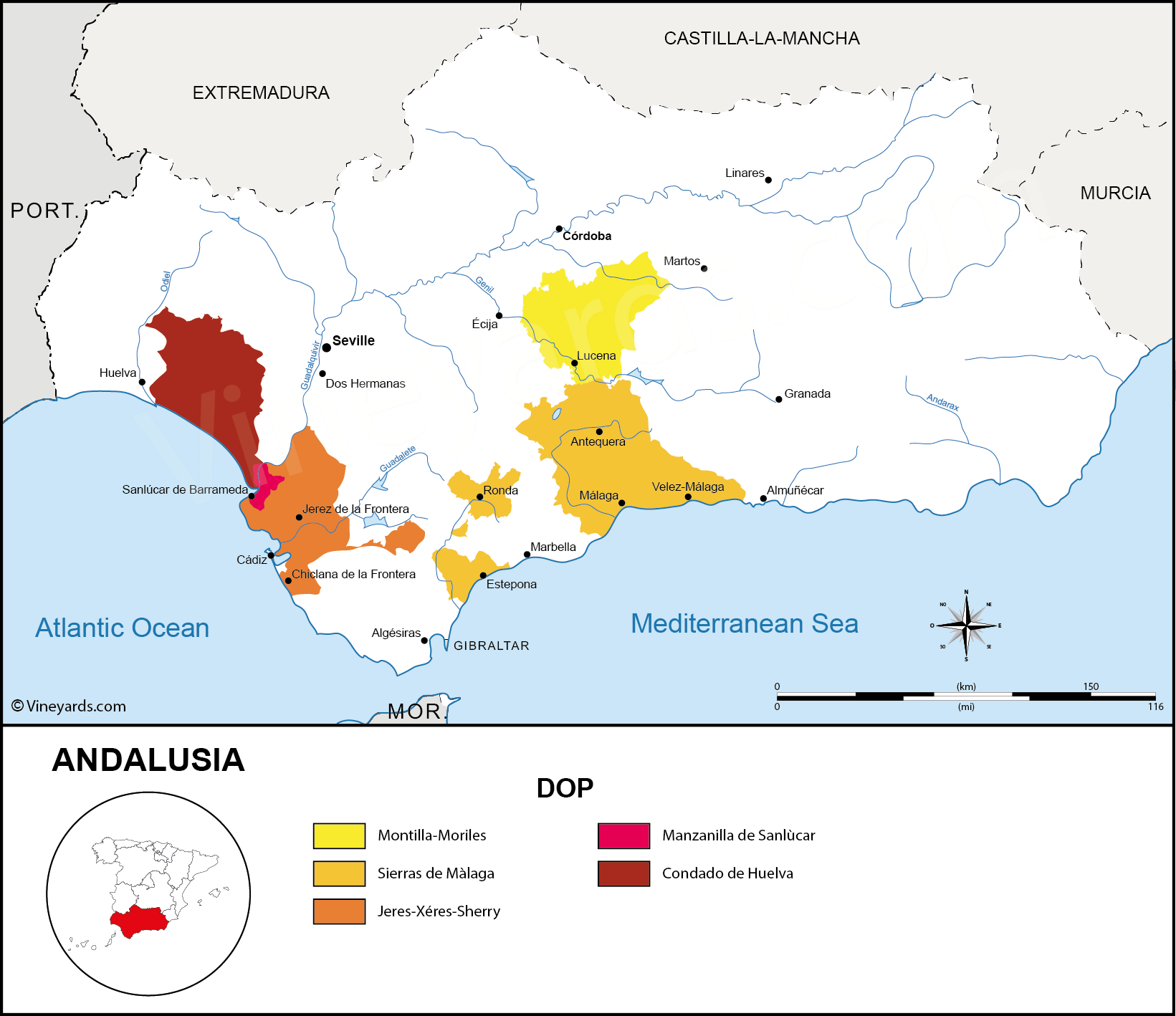 Wine Regions in Andalusia