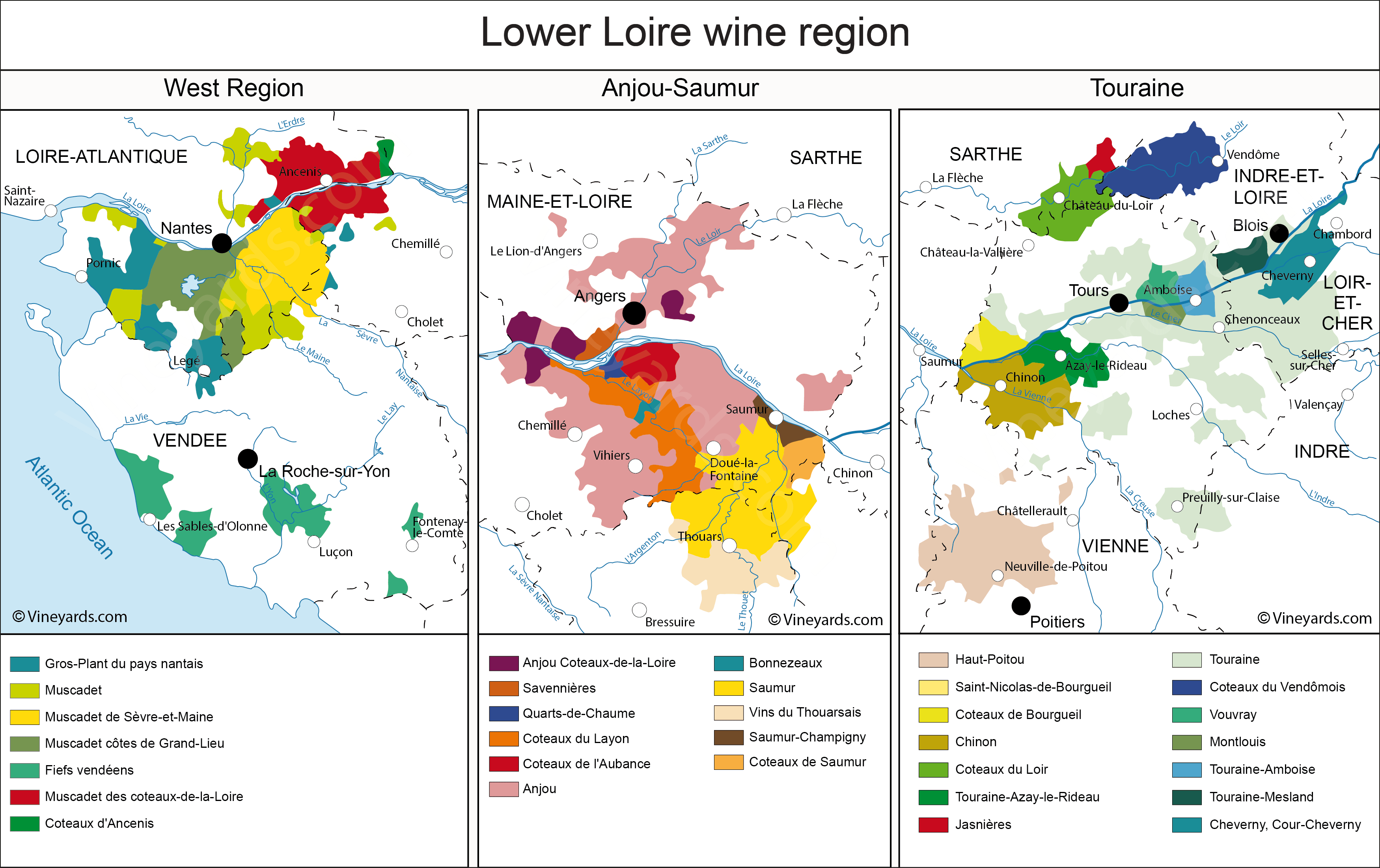 Wine Regions in Muscadet Anjou Saumur Touraine