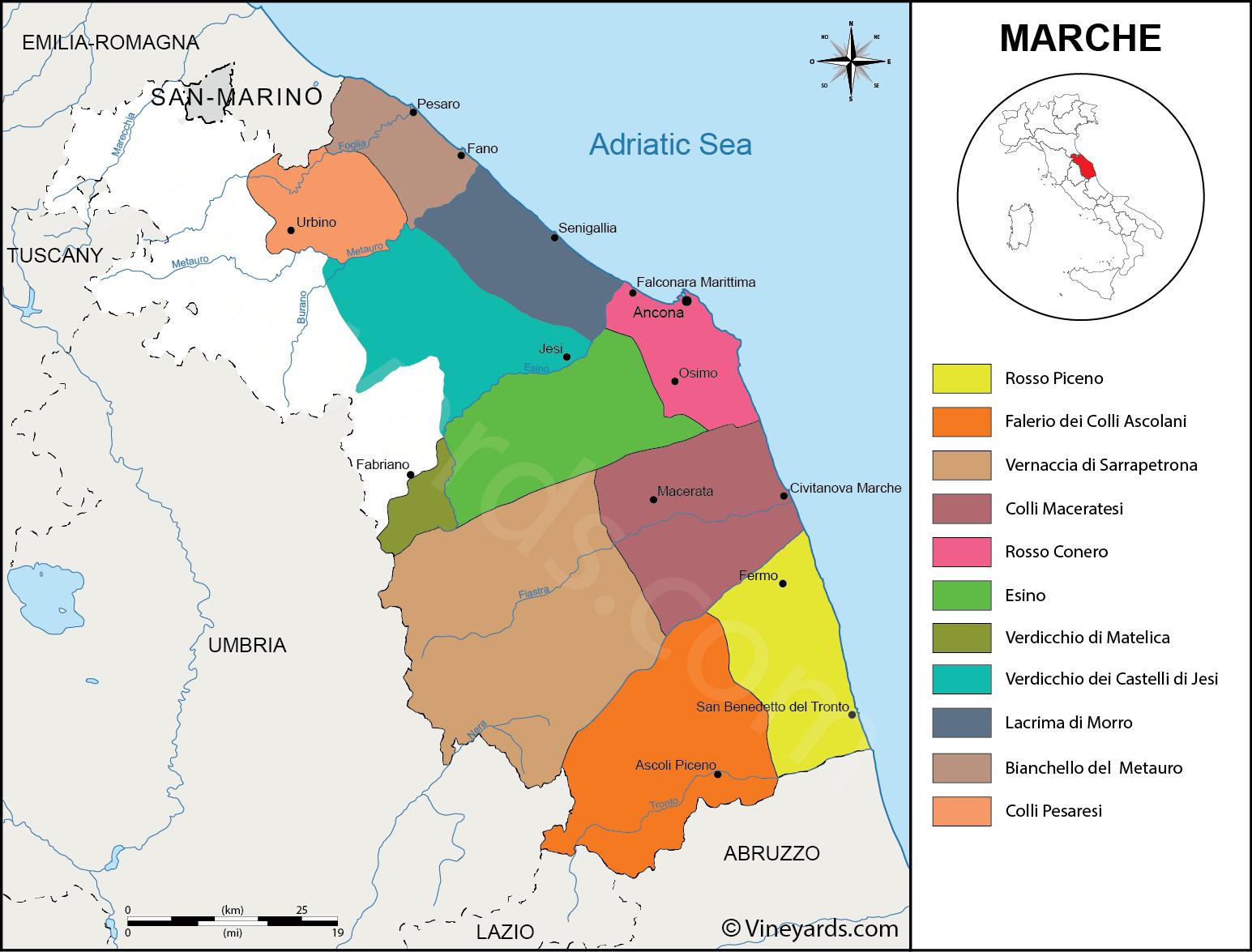 Italy Map Of Vineyards Wine Regions - Map of ancona italy