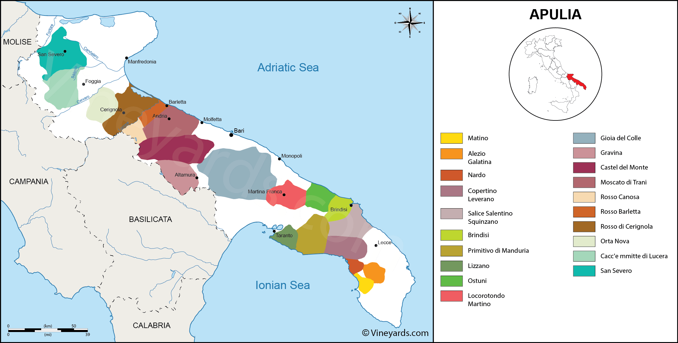 Wine Regions in Apulia