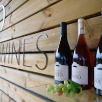 Soito Wines gallery photo