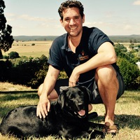 Daylesford Wine Tours profile photo