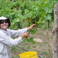 Graham Creeks Wine and Vine profile photo