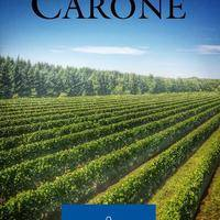 Vignoble CARONE Wines gallery photo