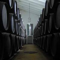 BODEGAS LAGAR BLANCO gallery photo