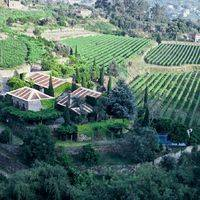 Quinta de Covela profile photo