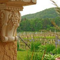 VIGNOBLE CARPINTERI profile photo