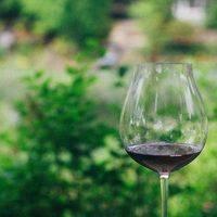 Keeler Estate Vineyard gallery photo