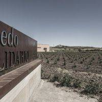 Bodegas Emilio Moro gallery photo