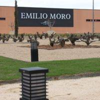 Bodegas Emilio Moro profile photo