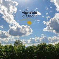 Au Vignoble d'Orford profile photo
