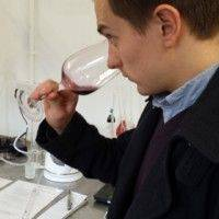 Quance Wines profile photo