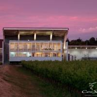 Cono Sur Vineyards & Winery gallery photo
