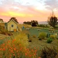 Sunlit Oaks Winery profile photo