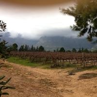 Domaine du Plessis profile photo