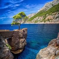 Zlatan Otok profile photo