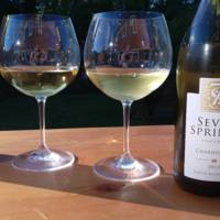 Seven Springs Vineyard  gallery photo