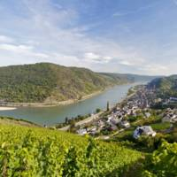Weinland Mittelrhein profile photo