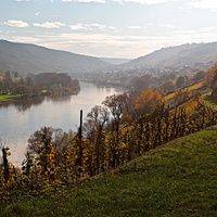 Weingut Arns profile photo