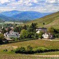 JoliSoleil Wine tours Pieter Smits profile photo