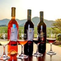 PB Valley Khao Yai Winery  profile photo