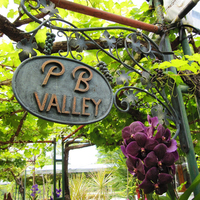 PB Valley Khao Yai Winery  profile photo