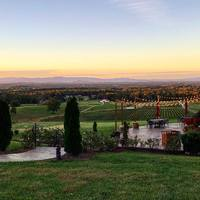 Piccione Vineyards gallery photo